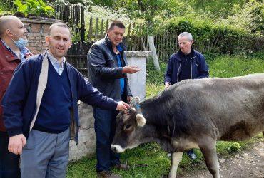 Džemati Soukbunar i Šanac povratničkoj porodici Hodžić u Rogatici donirali junicu