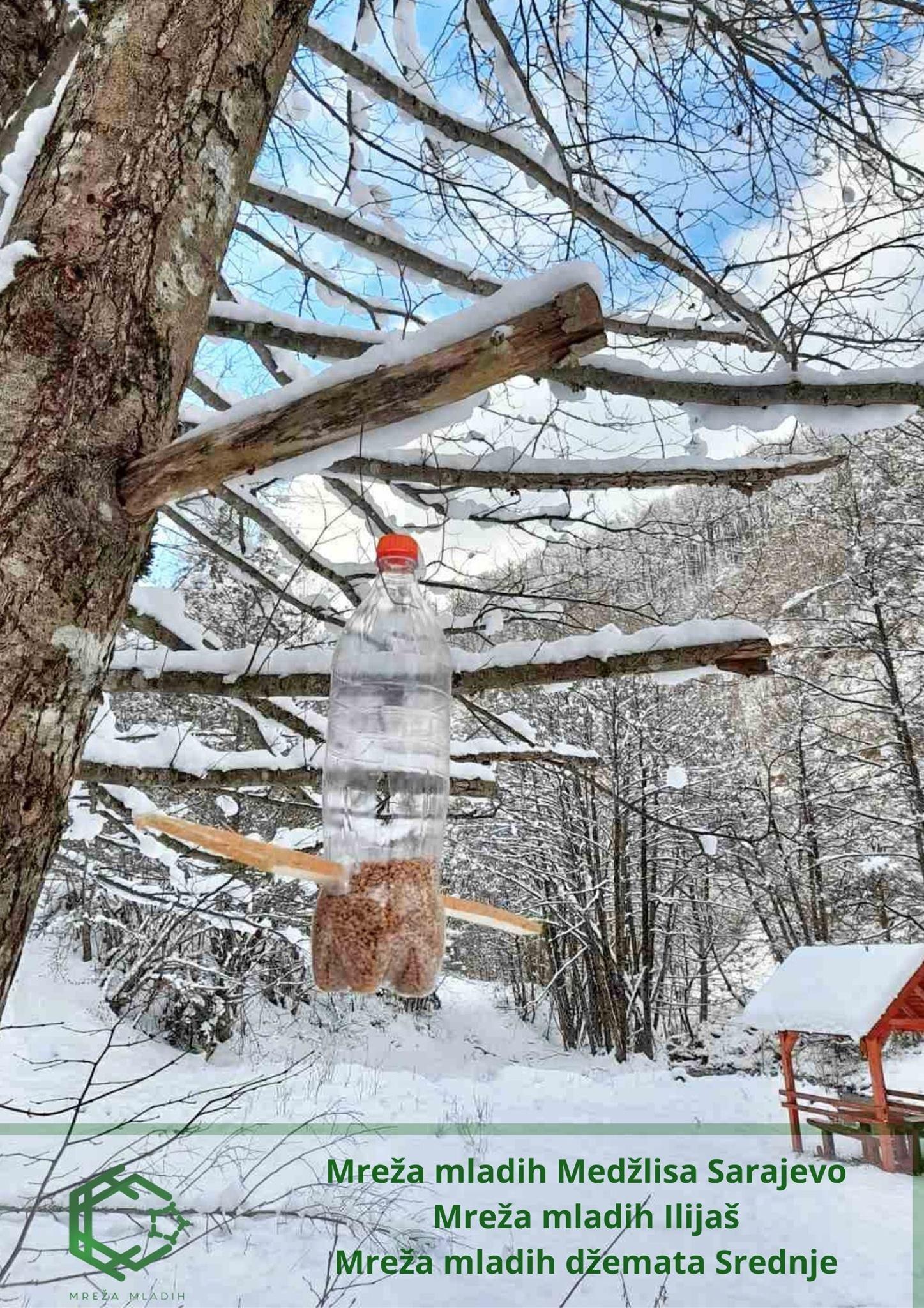 Džemat Srednje: Aktivisti Mreže mladih brinu o pticama tokom zime