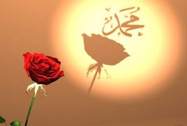 Iz Preporodove arhive: Muhammed, a.s., kao divan uzor